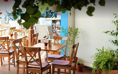 1479739444_laCarmencitaRestaurantPuertodelCarmen.jpg